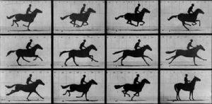 fotografias paso del caballo